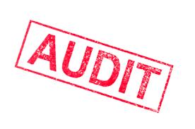 DOL_Audit