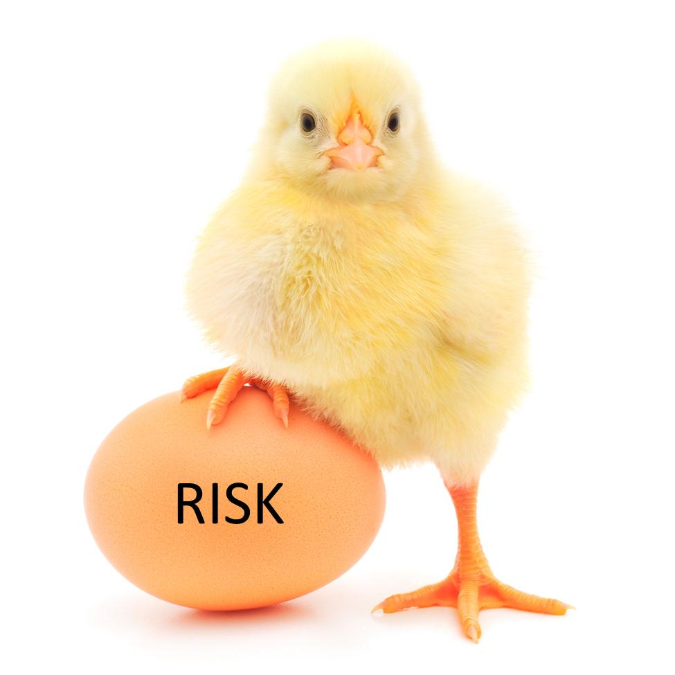 chicken_on_egg.jpg.png